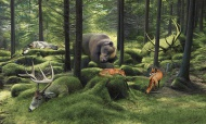 """""""The Sleeping Woods"""" is a print edition created by Josh Keyes. The image area of the artwork measures roughly 14"""" wide by 8.4"""" tall. With a border for framing, the artwork measures 15"""" wide by 9.5"""" tall. The archival prints are created by Tiny Showcase and ship with a corresponding certificate of authenticity. The archival artwork has been printed on a heavy 290gsm natural white print making paper made from 90% bamboo fibres and 10% cotton. $50"""